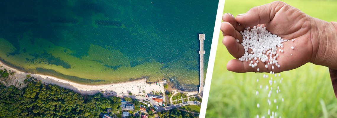 Video showcases phosphorus recovery for Baltic sea