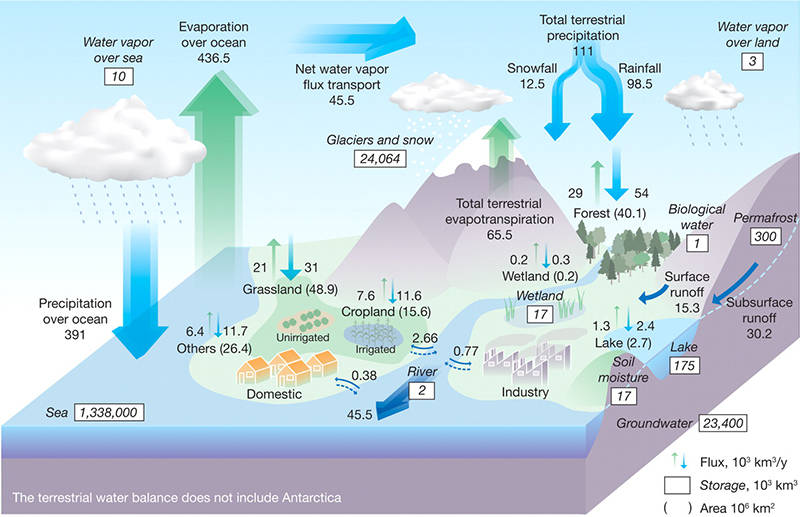 Global hydrology water management