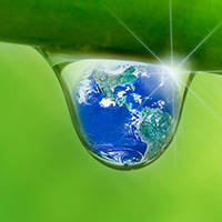 Our Sustainable Water Essential Guide